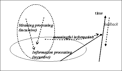 Recursive process image - types of cold water fish pets images